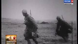 Сталинградская энциклопедия 87 я стрелковая дивизия