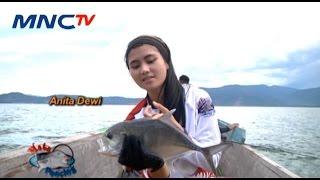 Download lagu Serunya Menjelajahi Perairan Morowali Utara - Mata Pancing MNCTV