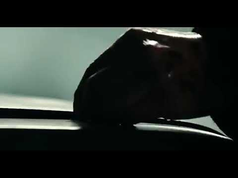 Film-Polar