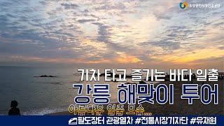 기차로 즐기는 강릉 해맞이 투어☀️ l 팔도장터 관광열…