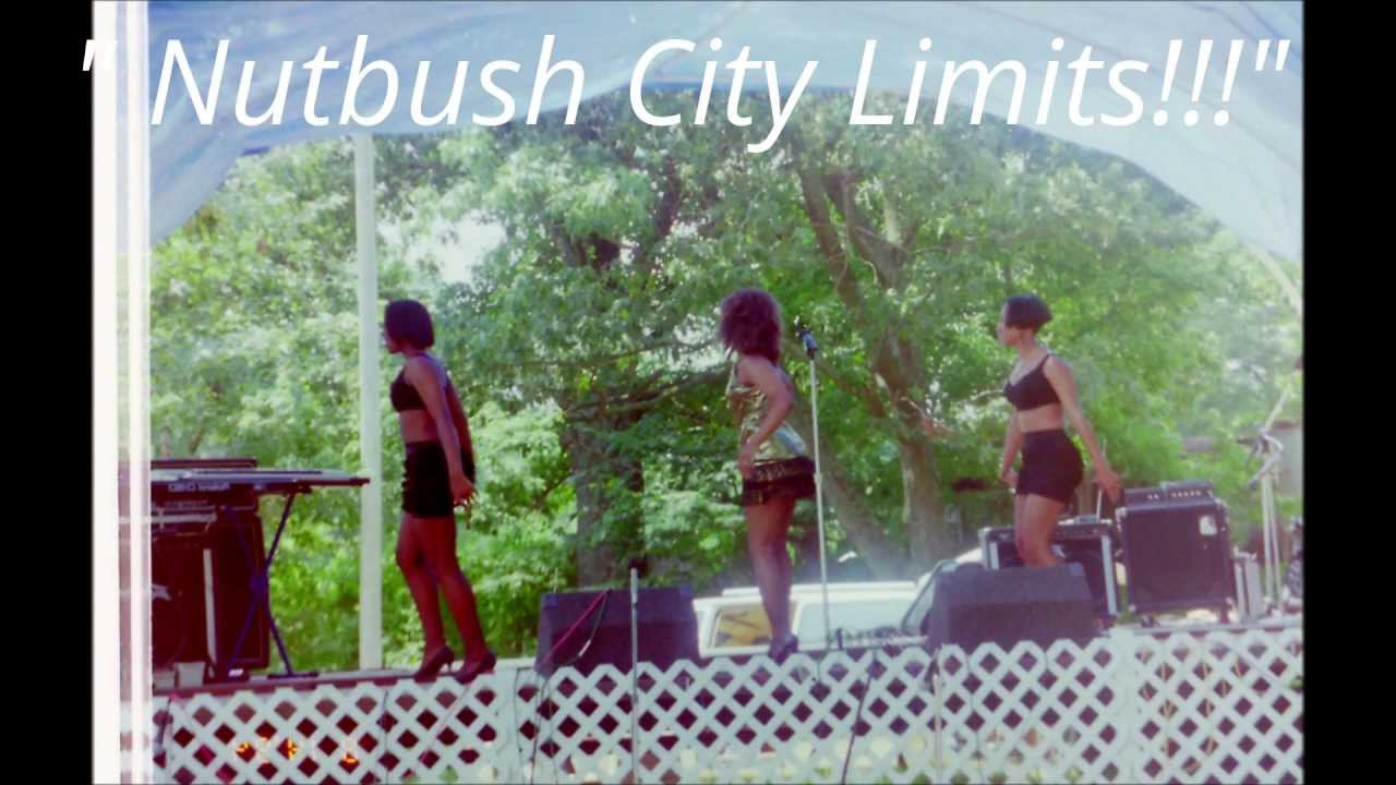 Tennessee Business Search >> Nutbush/Tina Turner Fans visiting Nutbush, Tennessee Vol. 2 by Sharon Norris - YouTube