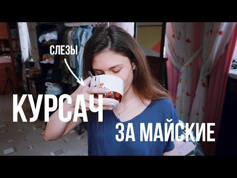 КУРСАЧ ЗА МАЙСКИЕ