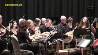 My Way Mandolin Orchestra Zupforchester Live Arrangement Cover Sinatra