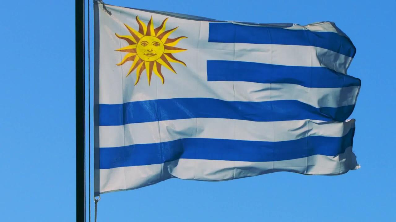 Bandera Pabellon Nacional Uruguay