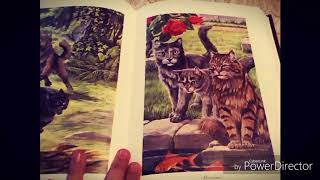 """Первое Видео!🐾/Обзор на книгу """"Полночь & Восход Луны/💜"""