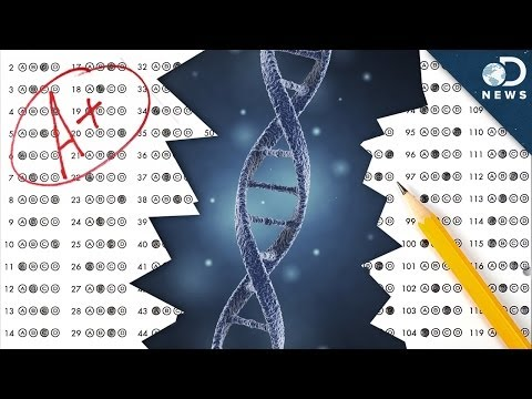Should You Blame Genes For Your Grades?