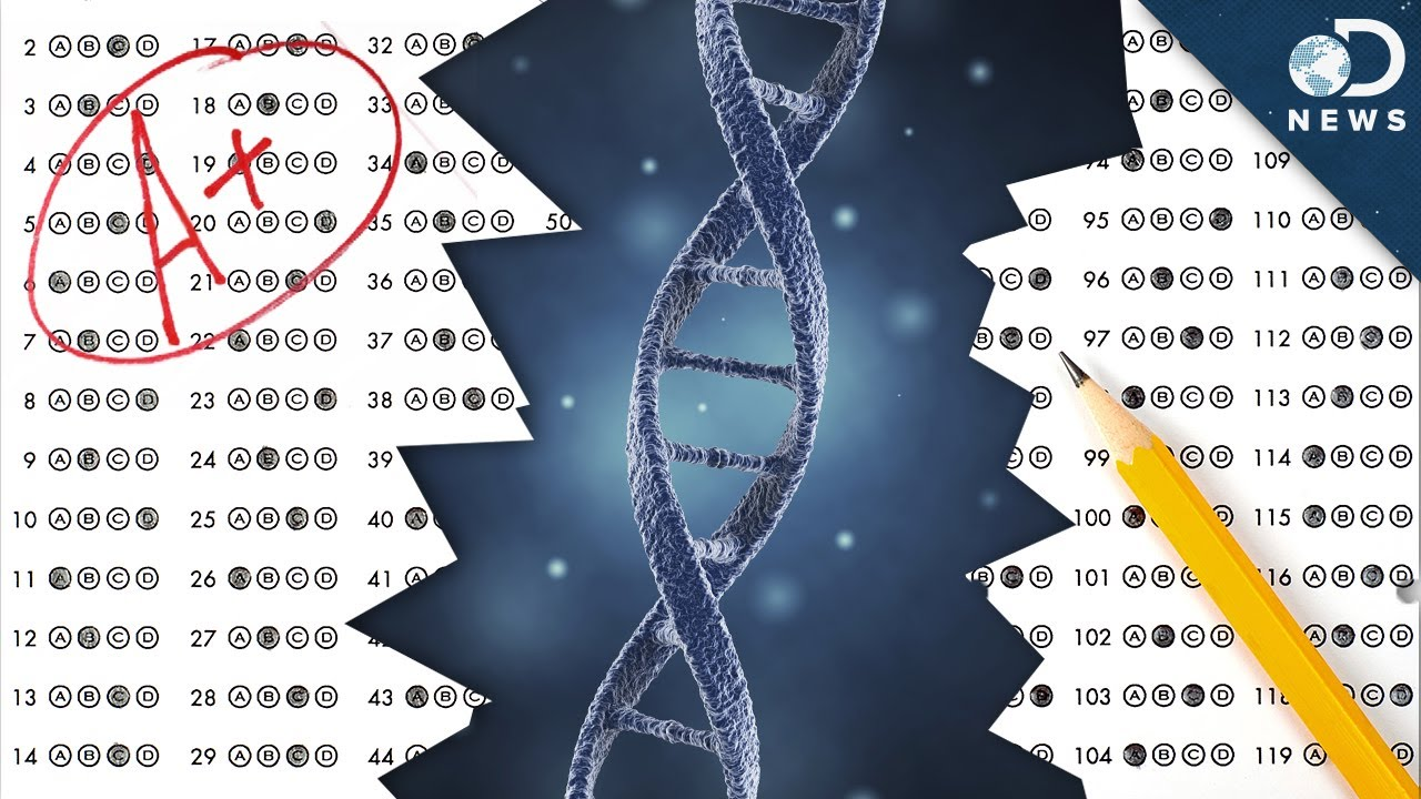 Inherited Intelligence: Scientists Discover Over 50 New Intelligence Genes