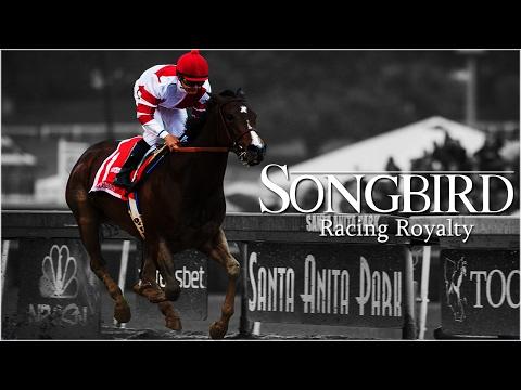 Songbird: Racing Royalty [Horse Racing Tribute]