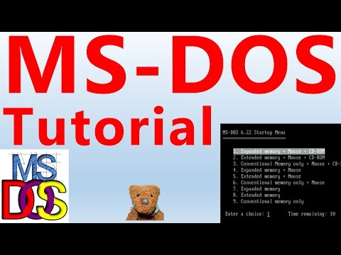DOS MS