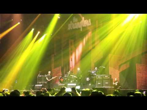 The Stranglers - Golden Brown @ WiZink Center