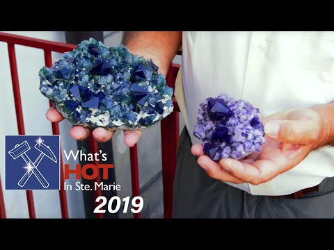 What's Hot In Sainte-Marie-aux-Mines  2019