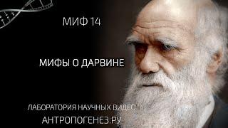 """Мифы о Дарвине. Из серии """"Мифы об эволюции человека""""."""