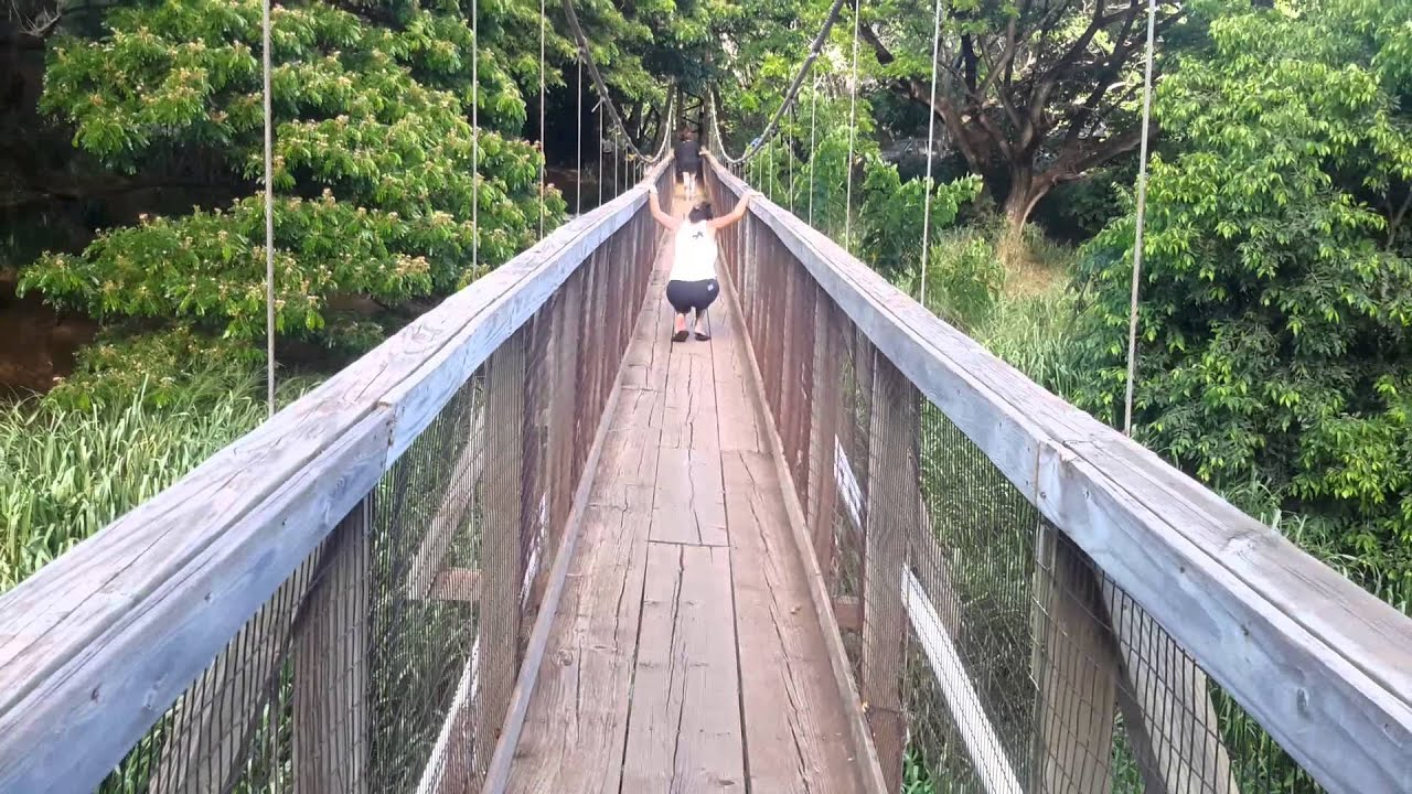 Menehune Ditch Swinging Bridge In Waimea Kauai Youtube