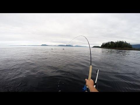 Salmon Fishing Prince Rupert 2016