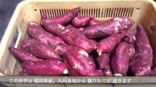 Popular Videos - Shōchū & Kyushu