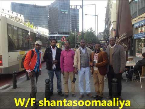 Idaacadda Warsan iyo Waryayaasha Koonfur Galbeed toos Brussels Warfidiyeenka shantasoomaaliya