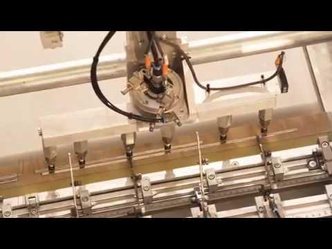SolarLife - Queensland's Aleo Solar AG distributor