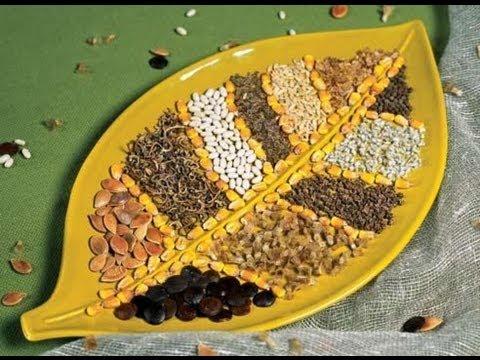 Какие семена и где купить