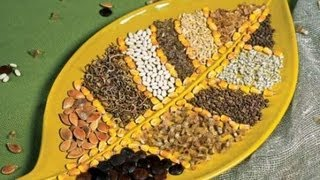 видео Где купить семена