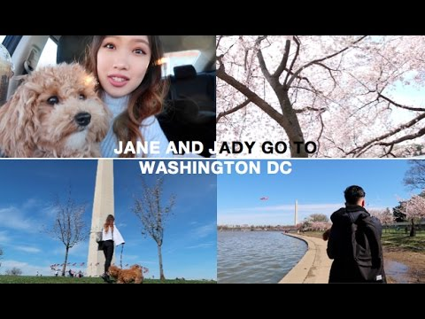 Jane and Jady go to WASHINGTON DC | Travel Vlog