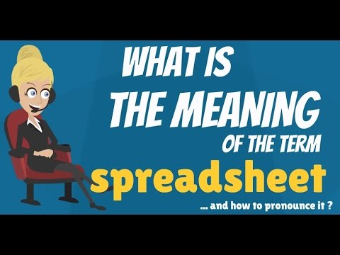 What is SPREADSHEET? What does SPREADSHEET mean? SPREADSHEET meaning ...