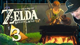 Jagd, Hobbykoch, Winterwams und Zeitstopp mit Stasis 🌳 THE LEGEND OF ZELDA BREATH OF THE WILD 🌳 #3