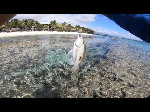 Ep#15- Shore Fishing/casting In Mauritius