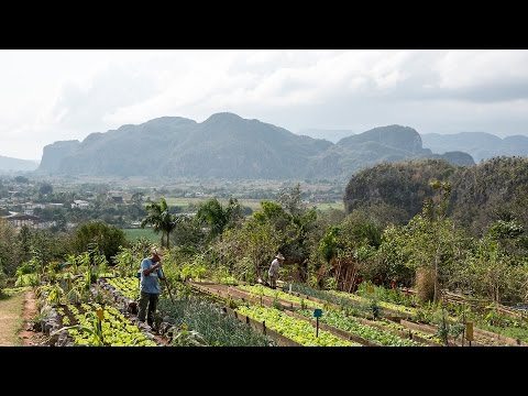Travel Cuba - Vinales Mountains and Caves
