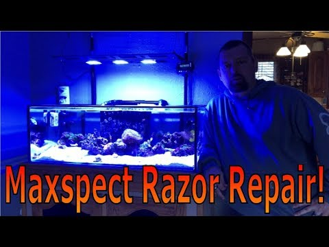 Maxspect Razor Led Light: Repair!