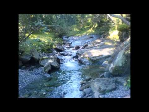 Sound Therapy - 30 minutes of water stream