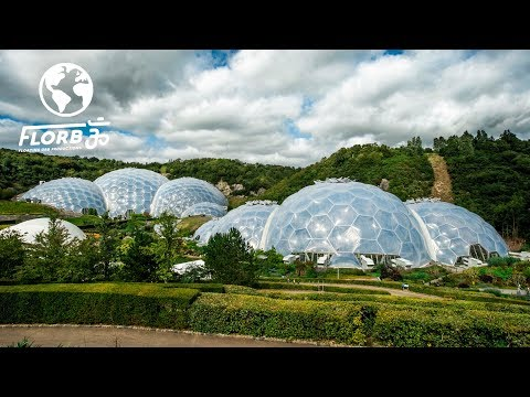 The Eden Project Built a Rainforest Ecosystem Inside Buckminster Fuller-Inspired Geodesic Domes
