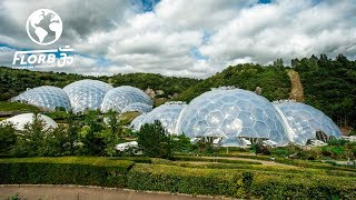They Built a Rainforest Ecosystem inside a Geodesic Dome