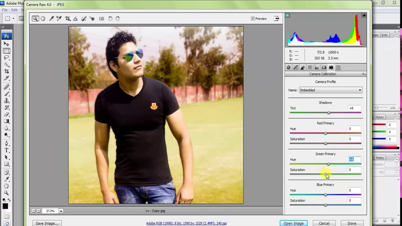 camera raw download for cs3