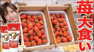 YouTube動画:【大食い】山口から届いた箱いっぱいのいちご練乳2本で食べつくす[幸せ]【木下ゆうか】