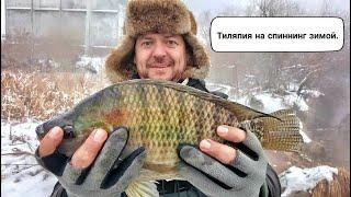 Рыбалка в Удомле Тилапия на спиннинг зимой
