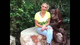 Любовь обезьяны к человеку😂😂😂