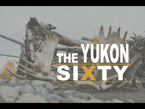 Moose Hunting In The Yukon 2014