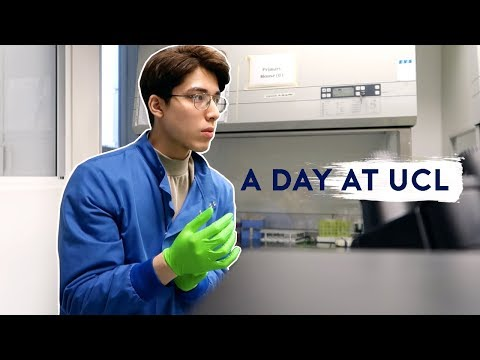 A Day In The Life At University College London (UCL)