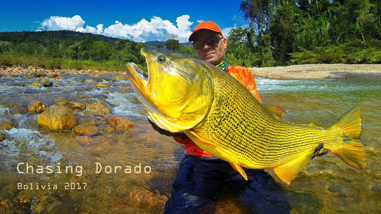 Download Chasing Dorado - Bolivia '17