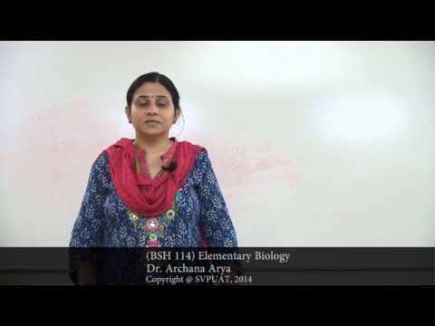 (BSH 114 Elementary Biology) Kingdom Fungi