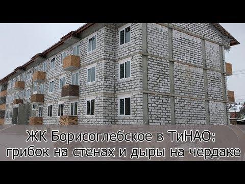 ЖК Борисоглебское в ТиНАО: грибок на стенах и дыры на чердаке