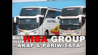7 PO Bus Ini Milik Perusahaan HIBA GROUP BisMania | HIBA UTAMA