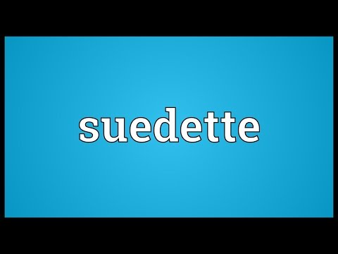 Header of suedette