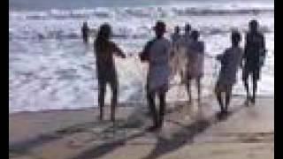 Arrastão - pescaria em Ponta Negra, RGN