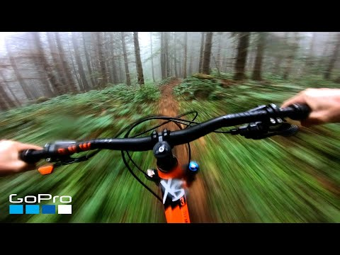 GoPro: Foggy Forest MTB
