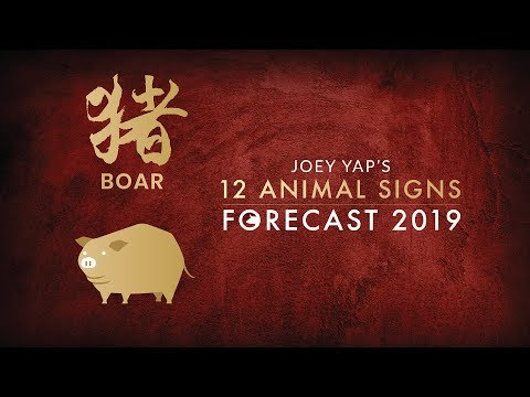 2019 Animal Sign Forecast: BOAR [Joey Yap]