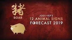 2019 Animal Sign Forecast: BOAR [Joey Yap]