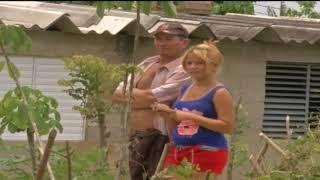 Más de 100 muertos en accidente aéreo en Cuba