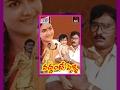 Vaddante pelli  telugu full length movie  bhagya raja  urvasi