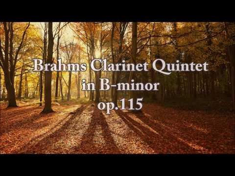 Brahms Clarinet Quintet in B minor op. 115 (FULL)